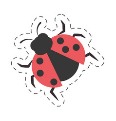 ladybug animal insect garden cut line vector image