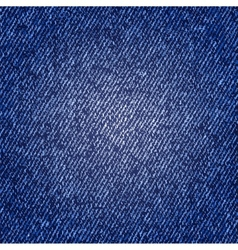 Photorealistic of jeans texture vector