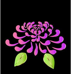 pink lotus flower on black background icon vector image