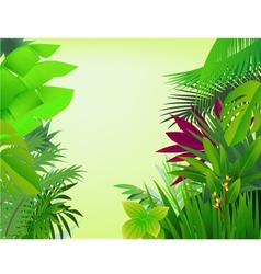 nature forest background vector image vector image