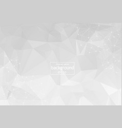 abstract low poly grey white technology vector image