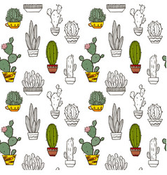 cacti seamless pattern vector image