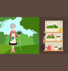 Elderly woman with a rake and a set of garden tool vector