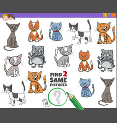 Find two same cats game for kids vector