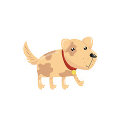 little dog with spotted body and shiny eyes puppy vector image