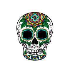 Mexican sugar skull with floral ornament dia de vector