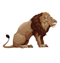 Profile of a sitting lion vector