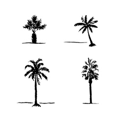 Set of hand drawn sketch palm trees vector
