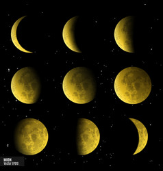 Set of moon phases vector