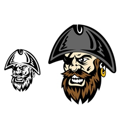 Angry corsair and pirate captain vector image vector image