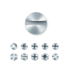 set of head screws and bolts nails and rivet vector image