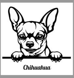 Chihuahua - peeking dogs - - breed face head vector