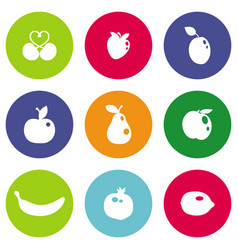 different fruits icons vector image