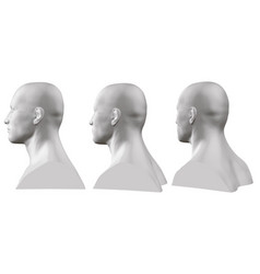 set of isolated male busts of mannequins on vector image