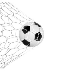 Soccer or football 3d ball isolated on white vector