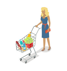 woman with basket buying daily products vector image