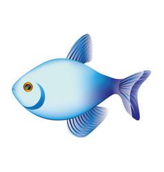 colorful fish aquatic animal icon vector image vector image
