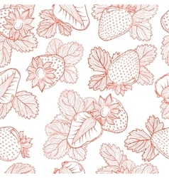 drawing pattern of strawberries vector image vector image