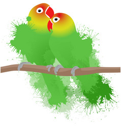lovebirds parrots vector image