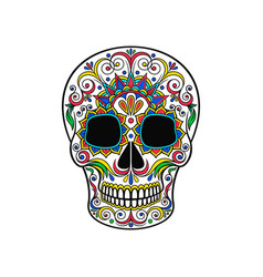 day of the dead skull sugar skull with floral vector image