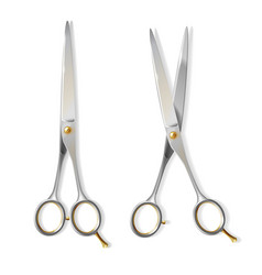 3d realistic scissors for hairdresser vector image
