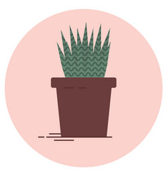 aloe vera plant on a pink vector image