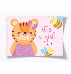 Boy or girl gender reveal its a girl cute tiger vector