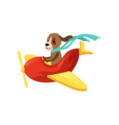 dog flying on red airplane with yellow wings and vector image