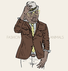 fashion of gorilla dressed up in leather jacket vector image