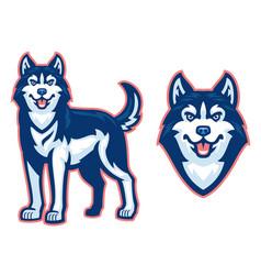 Husky dog set vector