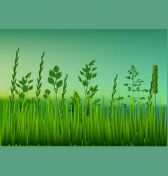 Meadow with grass vector