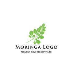 moringa logo design vector image