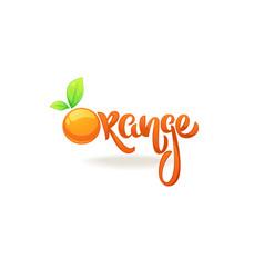 Orange lettering composition for your citrus vector