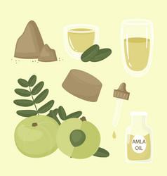 Organic flat design amla fruit elements vector