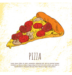 pizza piece isolated on bright background poster vector image