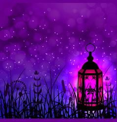 Ramadan kareem lantern and night sky vector