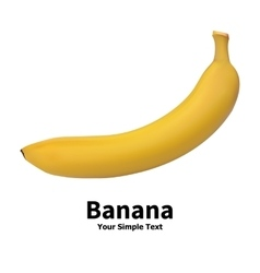 Realistic banana fruit vector