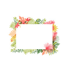 tropical flower composition floral jungle frame vector image