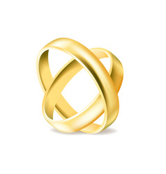two gold engagement rings isolated on white vector image