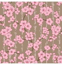 seamless cherry sakura blossom flowers pattern vector image