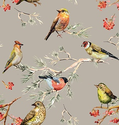 seamless texture of cute birds watercolor painting vector image