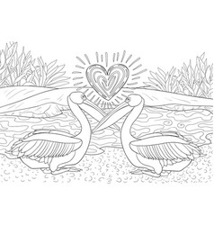 Adult coloring bookpage a pair of pelicans fall vector