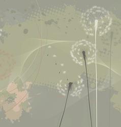 Floral background dandelions vector image