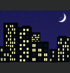 night scenery vector image