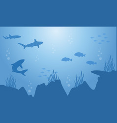 Silhouette of fish and shark on sea landscape vector