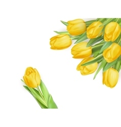 Spring card with space for text EPS 10 vector