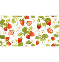 Strawberry background with flowers wild berries vector