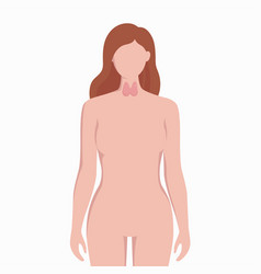 Thyroid on woman body silhouette medical vector