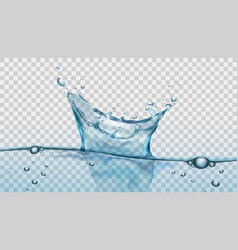 Water splash with droplets and bubbles on vector