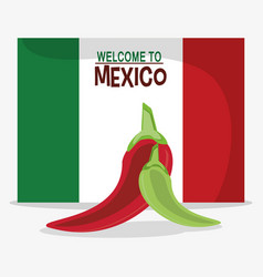 Welcome to mexico flag national vector